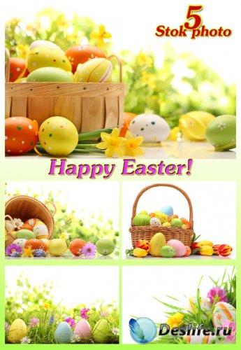 Пасха, пасхальные яйца, пасхальная корзина, цветы - Растровый клипарт