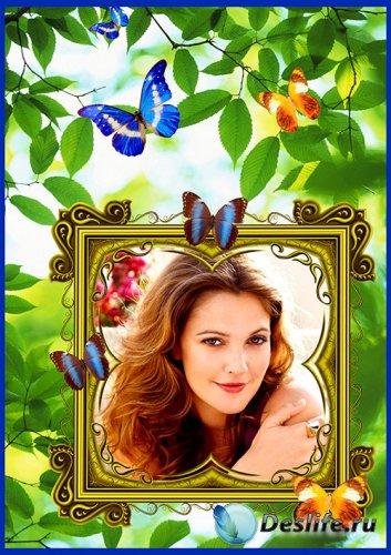 Фоторамка Летняя с бабочками 1