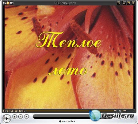 Цветочный футаж для оформления видео - Теплое лето