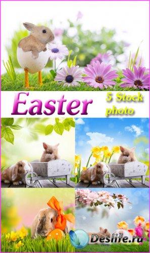 Пасха, пасхальные кролики - растровый клипарт
