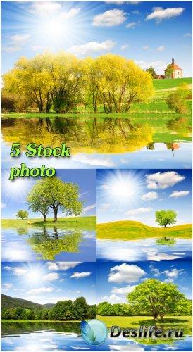 Природа, пейзажи, деревья, речка, небо - растровый клипарт
