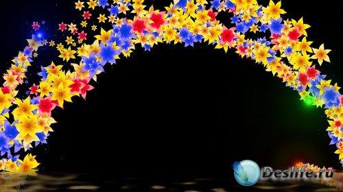 Футаж с альфаканалом - Фристайл