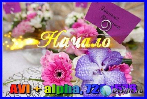 Свадебный футаж Начало (альфаканал)