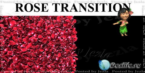 Футажи: Rose Petal Transition