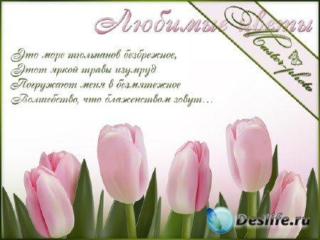 Исходник PSD для photoshop - Яркие цветы