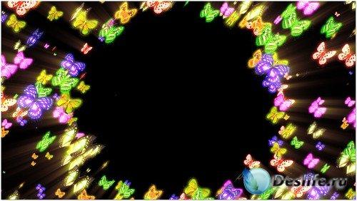 Футаж с альфаканалом - Кольцо из бабочек