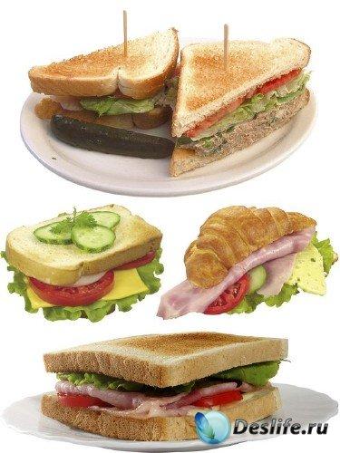 Фастфуд: Сэндвич - подборка изображений