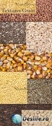 Текстуры – Зерно и крупа / Textures Grain