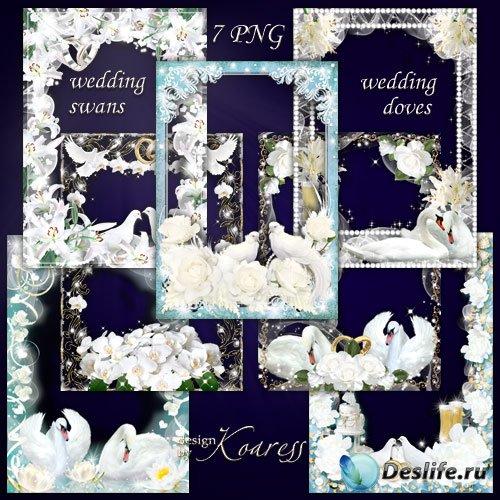 Набор фоторамок для свадебных фото - Нежные голуби, белые лебеди