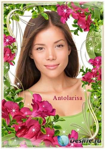 Рамка для фото – Розовые цветы