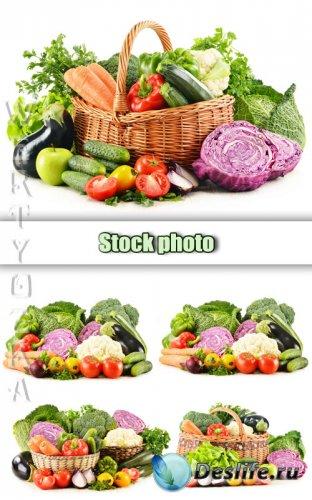 Свежие овощи, овощи в корзине / Fresh fruits and vegetables in a basket - R ...