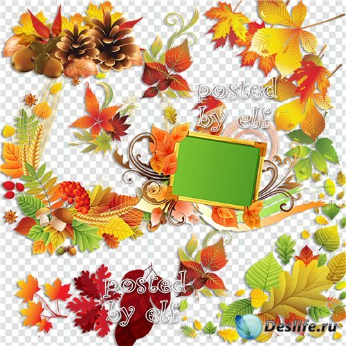 Клипарт в png - Осенняя листва