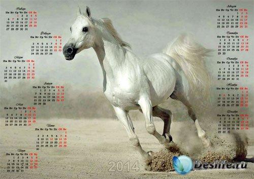 Настенный календарь - Прекрасная лошадь