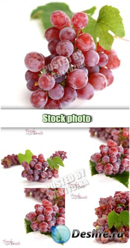 Виноград на белом фоне / Grapes on a white background - stock photo
