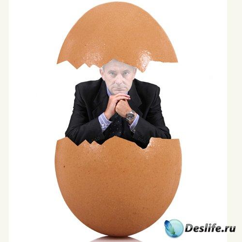 Костюм для фото - Необычное яйцо