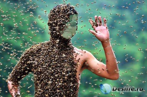 Костюм psd мужской - Весь в пчелах