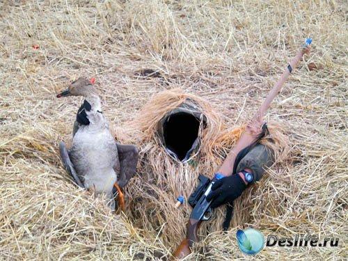 Мужской костюм - Маскировка на охоте