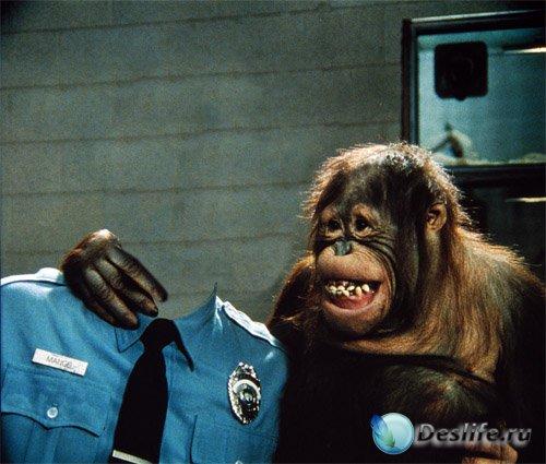 В форме полицейского с орангутангом - костюм для фотомонтажа
