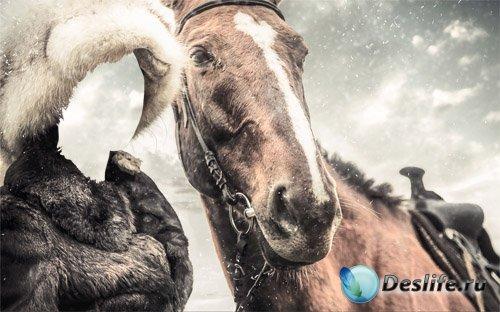 В меховой шапке и шубе с лошадкой - Костюм для фотомонтажа
