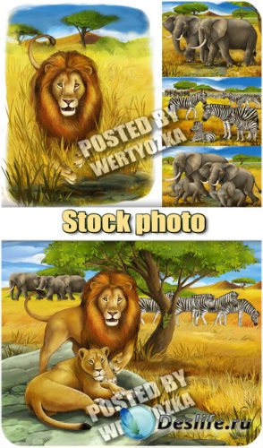 Лев, слоны и зебры / Lion, elephant and zebra - stock photos