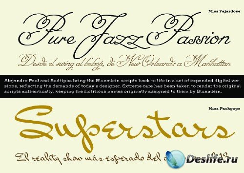 A Variety of Exclusive Fonts Part 2