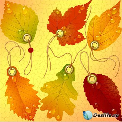 Клипарт - Разноцветные листочки