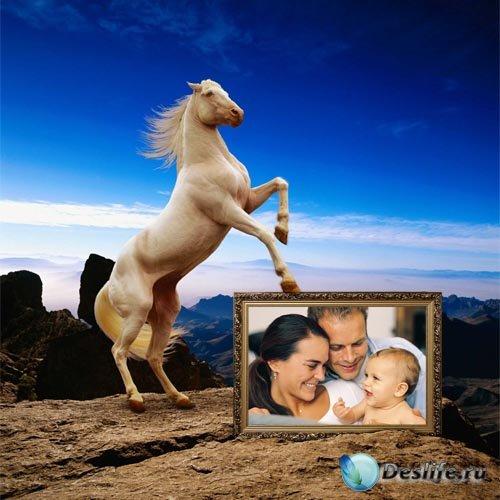 Рамка для фотошоп - Красивая лошадь на фоне синего неба
