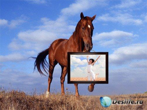 Фоторамка - Лошадь несет картину с вашей фотографией