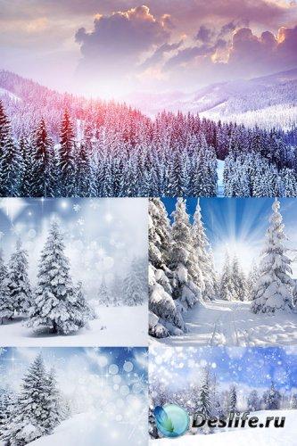 Растровый клипарт - Зимние пейзажи