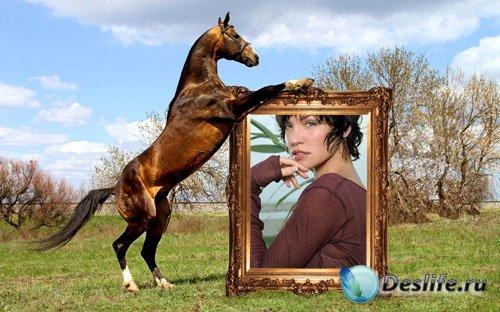 Рамка для фотографии - Игривый конь держит ваше фото