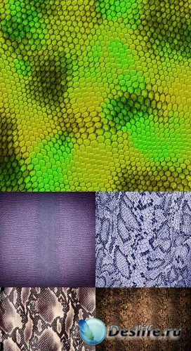 Растровый клипарт - текстура кожи змеи