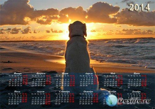 Календарь - Собачка у моря смотрит на закат