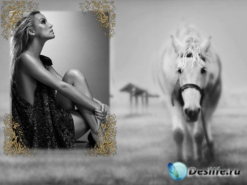 Рамка для фотографии - Лошадь в черно-белом стиле
