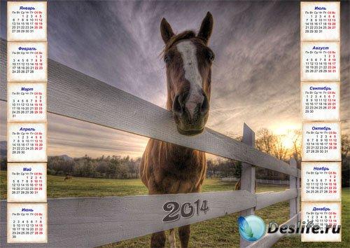 Календарь настенный с лошадью на 2014 год
