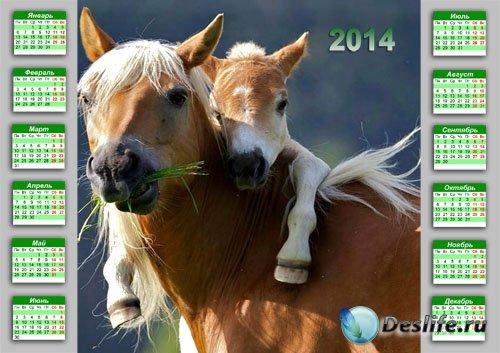 Календарь 2014 - Нежные объятия жеребенка с мамой