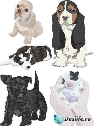 Милые щенки - векторная подборка