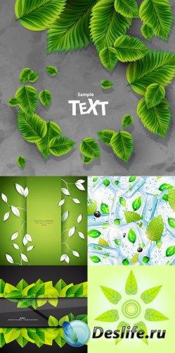 Фоны с зелеными листьями в векторе