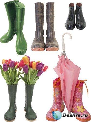 Резиновые сапоги и галоши: подборка клипарта обуви