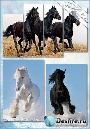 Psd исходник полиптихи - Прекрасные лошади