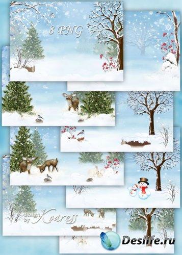 Зимние детские фоны для фотошопа - заснеженные кусты и деревья, лесные птиц ...