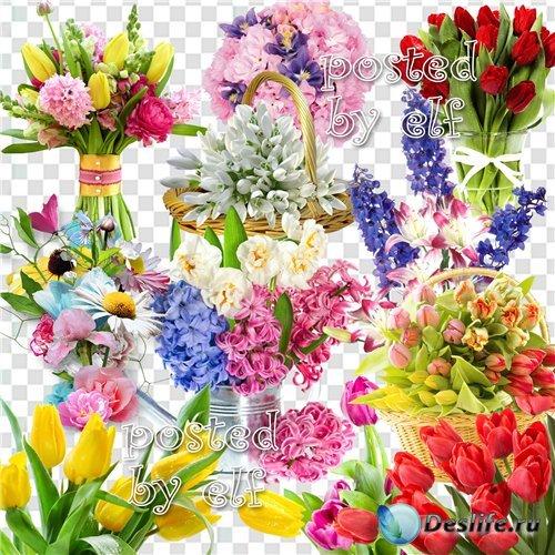 Клипарт без фона - Весенние цветы, в них столько нежности, любви и красоты