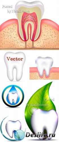 Клипарт – Стоматология в Векторе