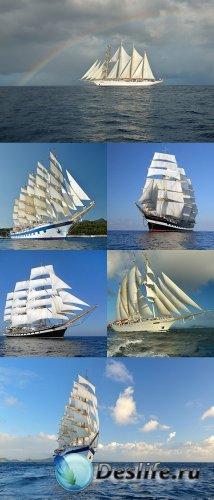 Растровый клипарт - Яхты