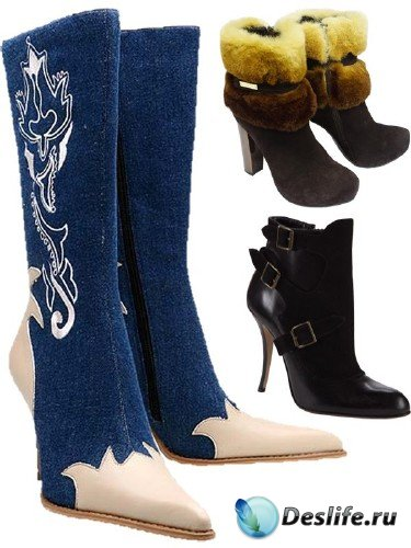 Женская обувь: сапоги и полусапожки