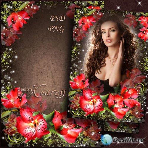 Женская романтическая рамка для фотошопа с красными цветами