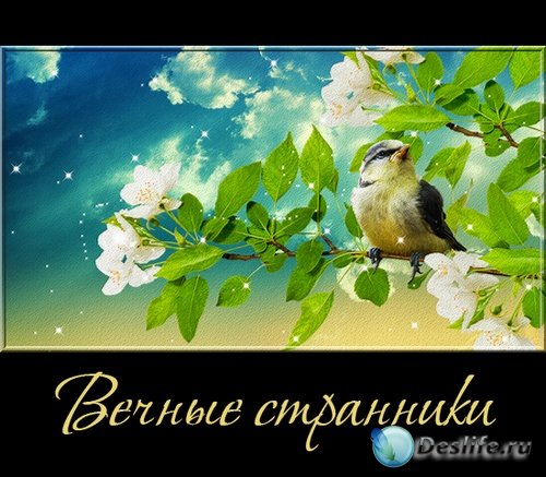 Вечные странники - птицы на прозрачном фоне