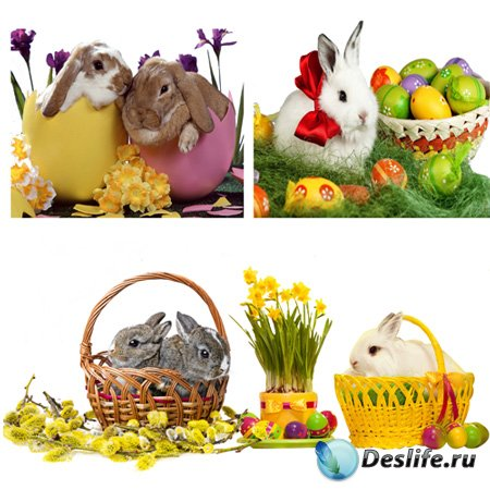 Клипарт - Пасхальные кролики
