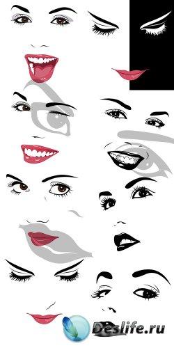 Женское лицо в векторе