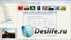 FastStone Image Viewer 5.1 RePack & Portable by KpoJIuK