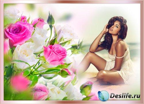 Рамка для фотографии - Нежный аромат розы